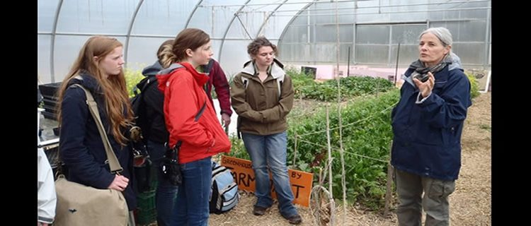 Touring the center for urban agriculture at the U of G