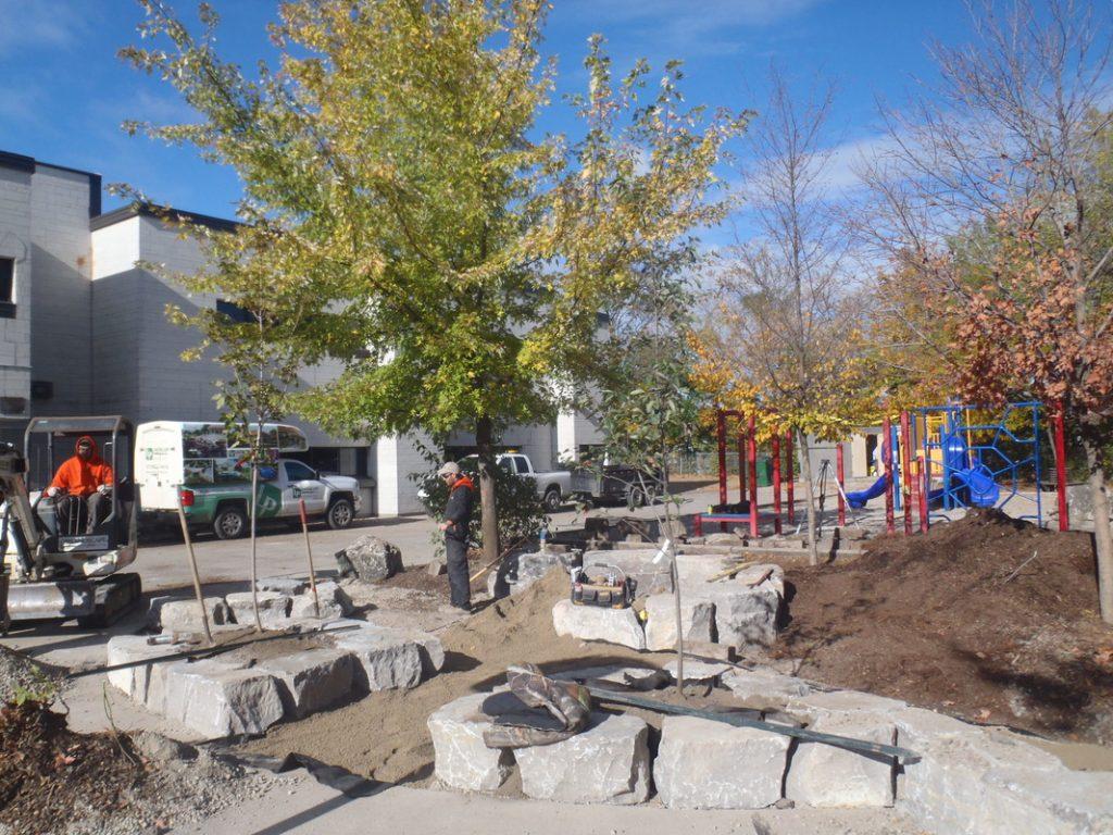 New Greening Improvements - Fall 2015