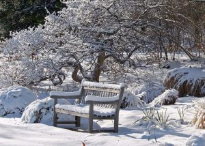 1001gardens.org What To Do In The Garden In Winter 728x520
