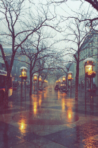 Rainy November
