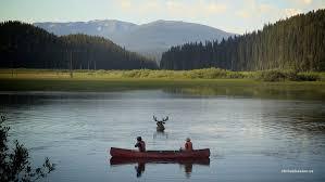 Moose Canoe