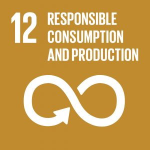SDG 12 Responsbile Consumption And Production