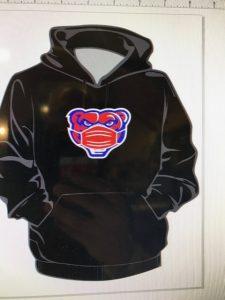 Bear Wear Hoody
