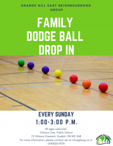Family DODGE BALL Drop In