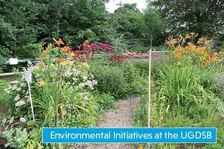 Check out the environmental initiatives at the UGDSB