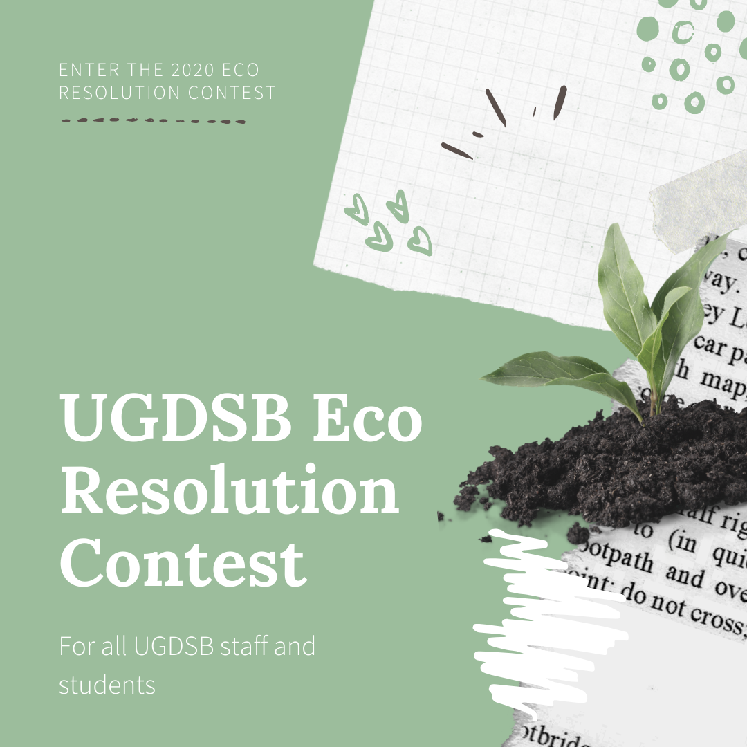 Eco Resolution Contest 2020 flyer first page
