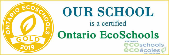 Our school won Gold certificate for EcoSchool Program